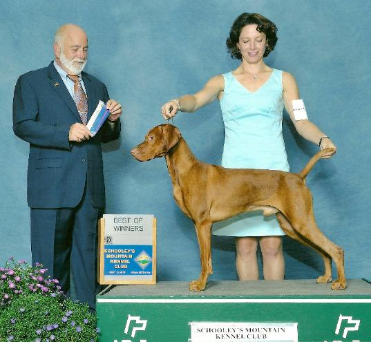 Hunters Ridge Scorecard: Vizsla Stud Dog Registry @ JCW, USA State